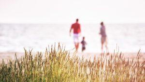 海岸にいる家族